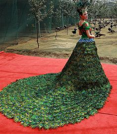 Now that's a peacock dress!