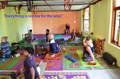 Mahi Yoga centers are located in Arambol and Dharamshala  http://www.mahipoweryoga.com/