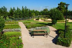 Botanical Garden in Park FloisvosPalaio Faliro, Attica2011 - 2012Public SectorBuilt3710 m2The Botanical Garden in Park Floisvos. The objective of this project is the creation of a neoteristic botanical gardens, with symbolisms drawn from the floral kingdom, aimed at inspiring the visitors and especially the children. An interplay of the senses is provoked by the landscape design of this botanical garden where colours, scents and the variety of forms are merged into a hymn for the nature of Landscape Architecture, Landscape Design, The Visitors, Botanical Gardens, Greece, Sidewalk, Colours, Park, Floral