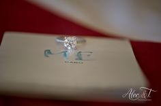 Me Cabo Resort Wedding photos by: Alec and T. Photography