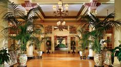 Oh the flora!   The Fairmont Empress, Vancouver Island, British Columbia