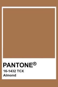 ideas for skin tony pallete color schemes Pantone Tcx, Pantone Swatches, Color Swatches, Pantone Colour Palettes, Pantone Color, Colour Pallete, Color Schemes, Brown Pantone, Cafe Creme