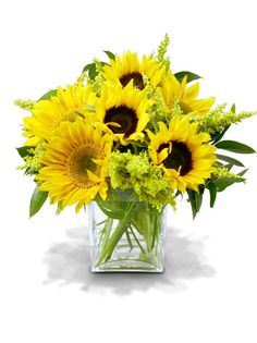 Another idea... only I'm thinking of using various (non matching) vases - sunflower centerpieces for weddings - Bing Images