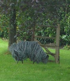 barbwire sheep...something amazing to make out of wicked barbwire...