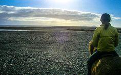 Ausritt auf einem Islandpferd