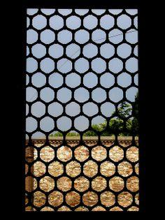 Hive Window