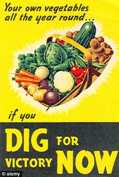 106 Best WWII Food Rationing images in 2015   War, Wwii