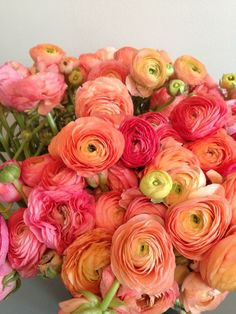 Ranunculus/is a category of flowering plants in the family Ranunculaceae. The petals are typically very lustrous, particularly in yellow types, owing to a unique coloration mechanism: the flower's top surface is smooth triggering a mirror-like reflection. Deco Floral, Floral Design, My Flower, Beautiful Flowers, Flower Names, House Beautiful, Austin Rosen, Spring Flowers, Fresh Flowers
