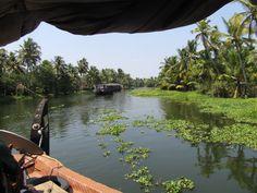 Backwaters, Kerala (India)
