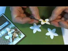 Stampin Up: 5 petal punch. How to make a lily form this punch.