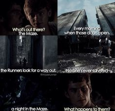 I love this part in the movie when Newt is talking about the Maze to Thomas