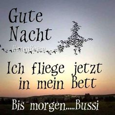 Gute nacht Goeie Nag, Good Night, Funny Pictures, Life Quotes, Positivity, Happy, Witches, Sleep, Halloween