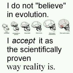 "But the way you scientists act, (especially Richard Dawkins) it's pretty much like a religion. You are hateful to anyone who does not accept your ""theory"" just like the religious are hateful to anyone who does not accept their religion."