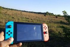 Yo dawg I heard you like Breath of the Wild so I drove you to the wild so you could play Breath of the Wild while you're in the wild.
