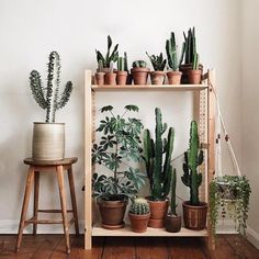 Hottest Pics cactus plants decoration Strategies Plants and cacti will be the ideal dwelling decoration intended for minimalists as well as development setter Decor, Baby Room Decor, Bedroom Plants, Plant Decor Indoor, Plant Care Today, Romantic Bedroom Decor, Modern Baby Room, Plant Decor, Indoor Plants