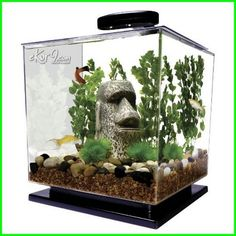 50 Aquascaping Ideas In 2020 Fish Tank Aquascape Aquascape Aquarium