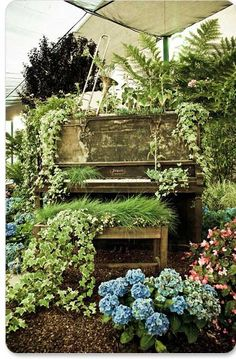 OH my gosh.  This is A~mazing. Piano + Garden = Love!