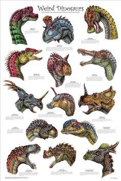 Sauropod casts Dinosaur Sauropod replicas Apatosaurus Brachiosaurus Ultrasaurus Supersaurus