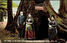 Postcard Kalifornien Santa Cruz, Fremont Wife and Daugthers | akpool.co.uk
