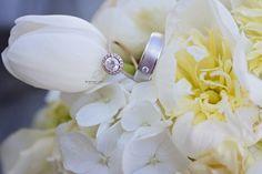 Wedding rings Brianna Noelle Photography San Francisco Wedding Photographer