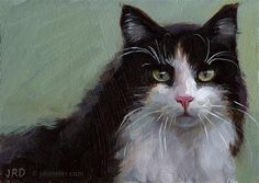 """Daily Paintworks - """"Black and White and Fluffy (No. 2)"""" - Original Fine Art for Sale - © J. Dunster"""