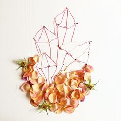 crystals made from roses and rhododendron stamens.