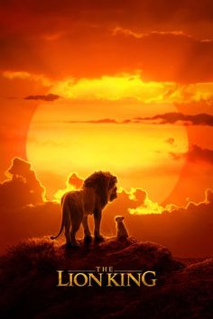 The Lion King 2019 news: Everything we know so far. See the images, posters, cast information and more from Disney's live-action production of The Lion King! Starring Beyonce, Donald Glover and more! Donald Glover, Le Roi Lion Film, Le Roi Lion 2, Watch The Lion King, Lion King Movie, Lion King Poster, Lion King Imdb, Men In Black, Live Action