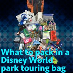 Park touring bags at Disney World