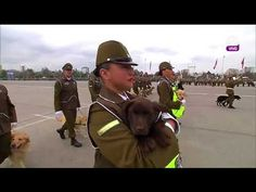 YouTube Chile, Music, Youtube, Military, Dogs, Musica, Musik, Chili, Chilis
