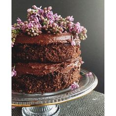 Hello from where #GlutenFree cake dreams come true! PS: Our Chocolate Cake Mix was featured today on @KimKardashian's Mother's Day Gift Guide!  #SweetLaurelBakery #GrainFree #RefinedSugarFree #DairyFree