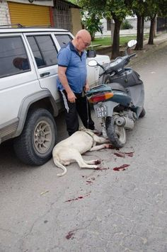 Severe Punishment For Cordoba Man That Dragged His Dog Behind A Moving Motorcycle! Please sign and share this petition. This pos must be jailed.