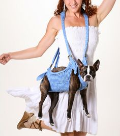 Puppoose Crochet Dog Carrier- Blue this is hilarious. that dog looks uncomfortable. Dog Bag, Dog Purse, Dog Clothes Patterns, Poor Dog, Dog Carrier, Pet Carriers, Dog Sweaters, Dog Crate, Diy Stuffed Animals