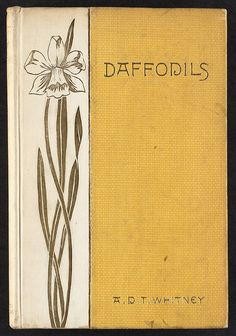 Daffodils [Front cover] | Flickr - Photo Sharing!