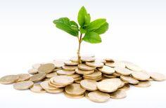 Dasar-dasar money management untuk trading forex