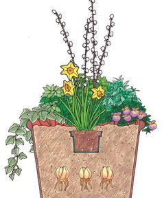Spring Containers for Every Style - Fine Gardening Article
