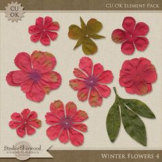 Winter Flowers 4 {CU} Element Pack