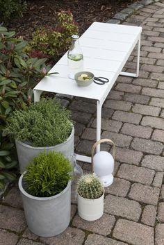 Brick path, metal bench, concrete planters, lantern