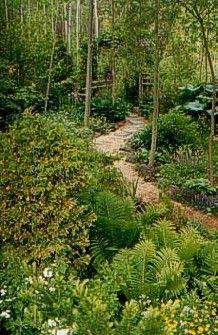 Woodland Garden/fern Grotto