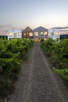 Gallery - Kindergarten over the Vineyard / architekti.sk - 1
