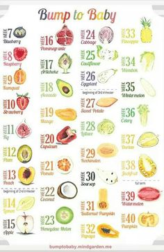 Baby Fruit Chart A And Vegetable Size Comparison In Grey Gray Uniquely Covers All Possible Weeks Of Term Pregnancy Includes Indicators For S Growth During Baby Calendar, Pregnancy Calendar, Pregnancy Journal, Pregnancy Scrapbook, Pregnancy Countdown, First Time Pregnancy, Pregnancy Stages, Pregnancy Tips, Pregnancy By Month