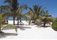 Passion Island in Cozumel Mexico .. the prettiest little island I have ever seen .. loved laying in the beds with the white canopies .. so romantic!