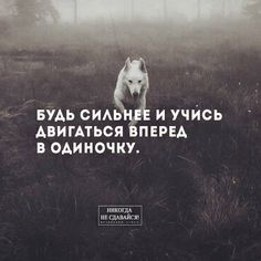 Bible Quotes, Words Quotes, Wise Words, Motivational Quotes, Inspirational Quotes, Sayings, Quotes Positive, Russian Quotes, Aesthetic Words