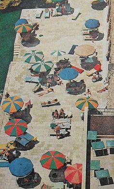1960s VINTAGE PHOTO Men Women Beach Swimwear (1)    taken from Life Magazine    taken from Life Magazine