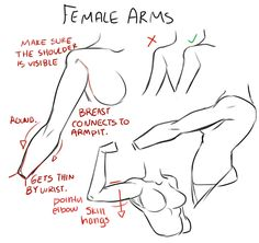 Female arms. http://art-tutorials.tumblr.com/post/56339518368/captainsart-for-the-ones-who-asked-for-arm ★ || CHARACTER DESIGN REFERENCES (https://www.facebook.com/CharacterDesignReferences & https://www.pinterest.com/characterdesigh) • Love Character Design? Join the Character Design Challenge (link→ https://www.facebook.com/groups/CharacterDesignChallenge) Share your unique vision of a theme, promote your art in a community of over 25.000 artists! || ★