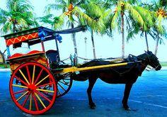 looneyplanet: Calamba Joe's Saturday in Dumaguete (Jose Rizal's transit in Negros Island)