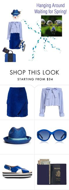 """The Blues"" by petalp ❤ liked on Polyvore featuring Derek Lam, Sensi Studio, The Row, Flamingos, Royce Leather, Giorgio Armani, women's clothing, women's fashion, women and female"