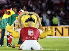 El león de Independiente Santa Fe Champions, Fes, Sports, Amor, Cardinals, Polar Bear, Lion, Strength, Red