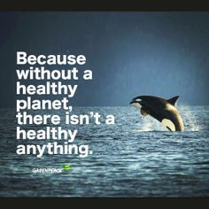 ... without a healthy planet, there isn't a healthy anything. Greenpeace.