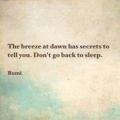 """""""The breeze at dawn has secrets to tell you. Don't go back to sleep."""" - Rumi"""