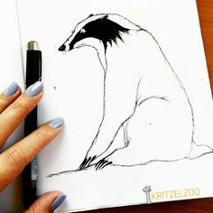 My Animal, Animal Drawings, Illustration, Animals, Art, Art Background, Animaux, Animal Sketches, Illustrations